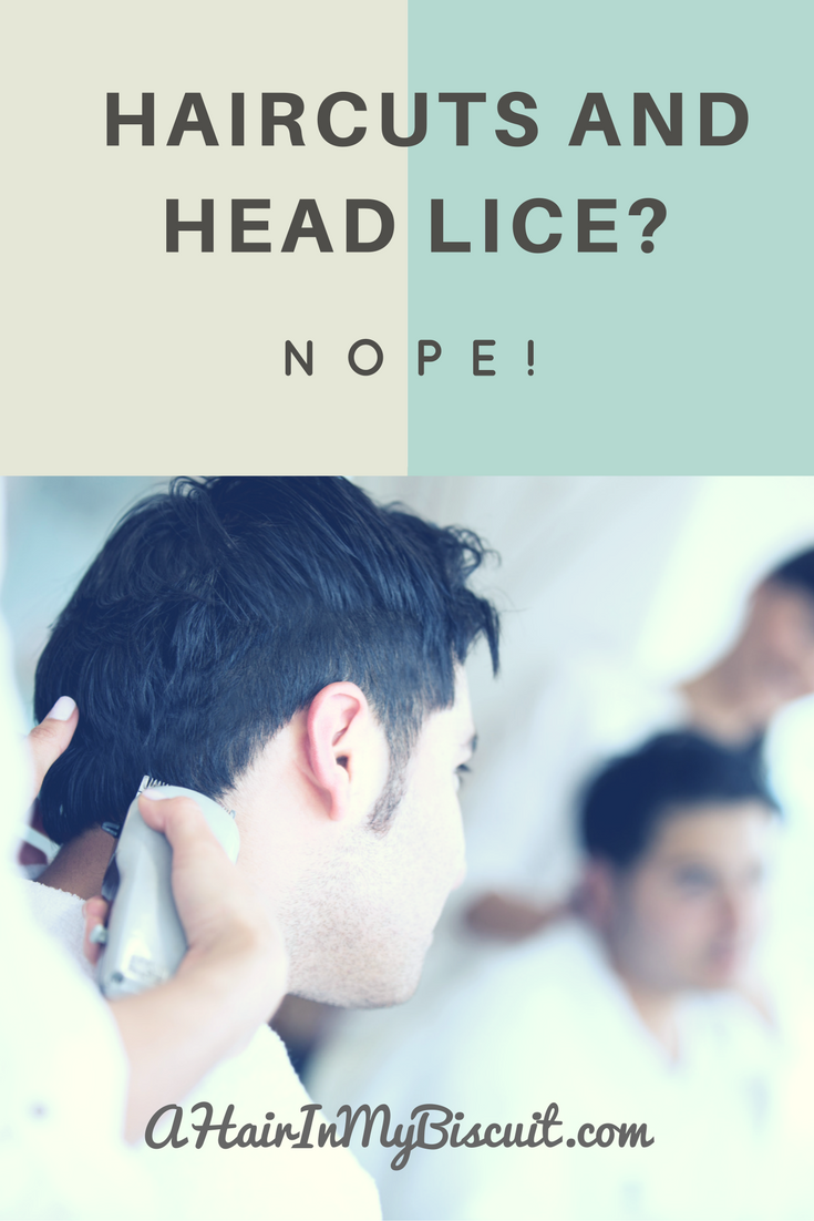 haircuts and head lice